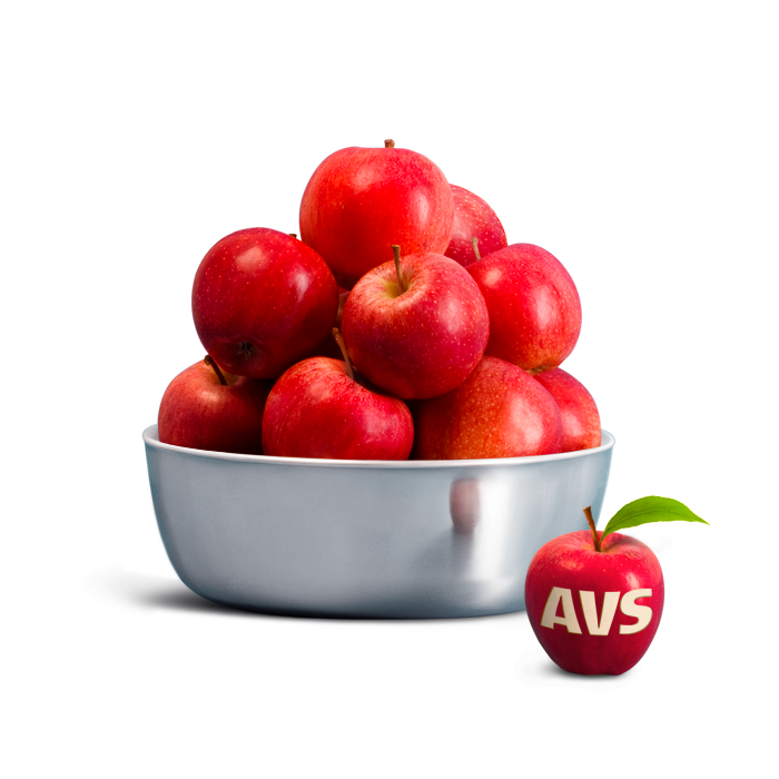 AVS_Successions