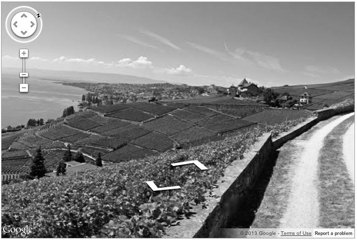 Le vignoble de Lavaux, en ligne.