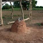Tibin : pierre sacrificielle