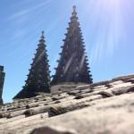 Toits du palais des papes